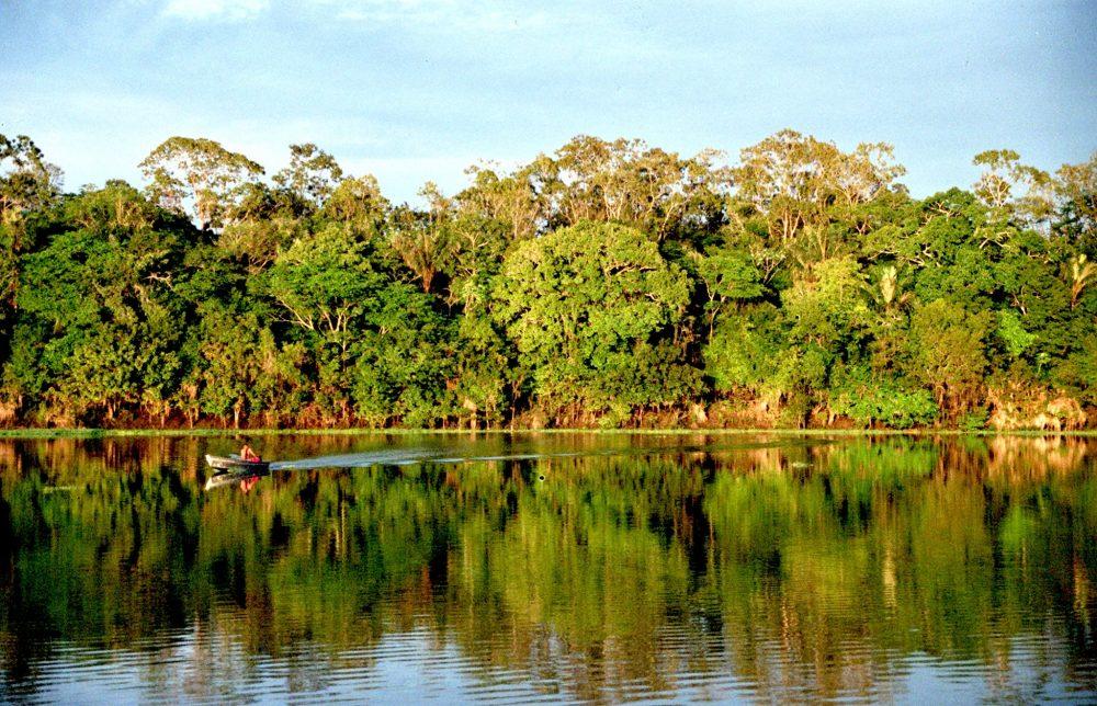 Amazonia evangelizar, no cuestionar el celibato