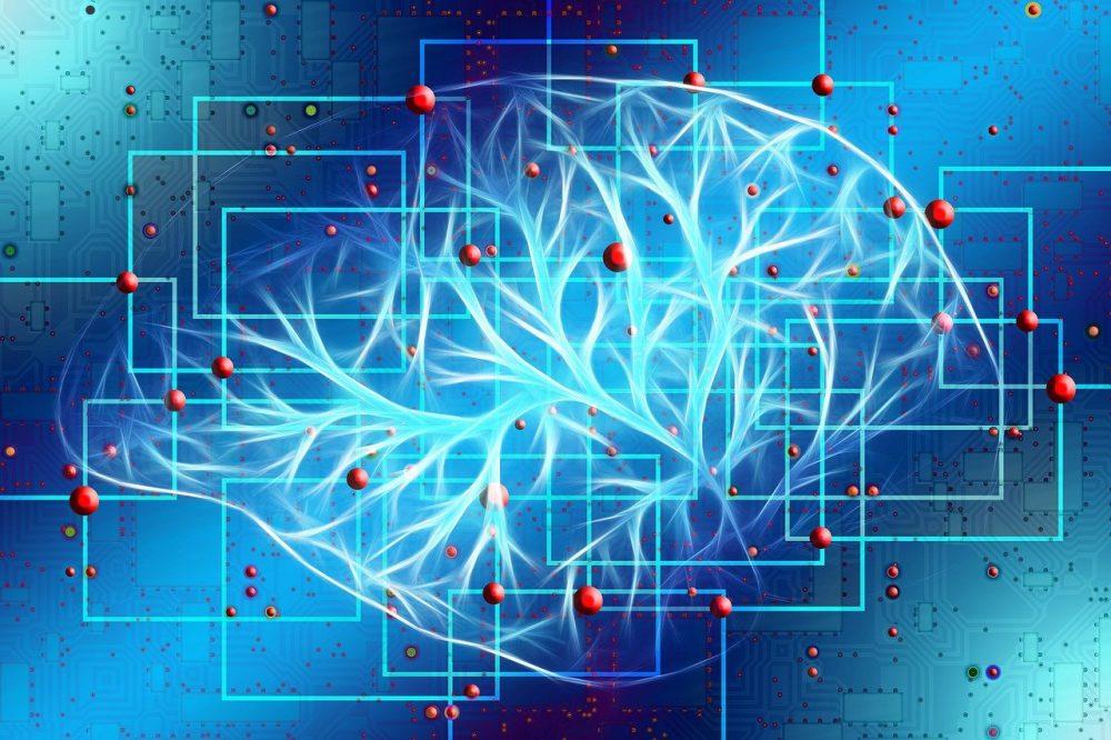 El cerebro no es un ordenador (1)