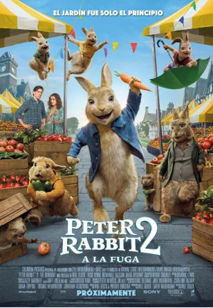 Pterr Rabbit 2