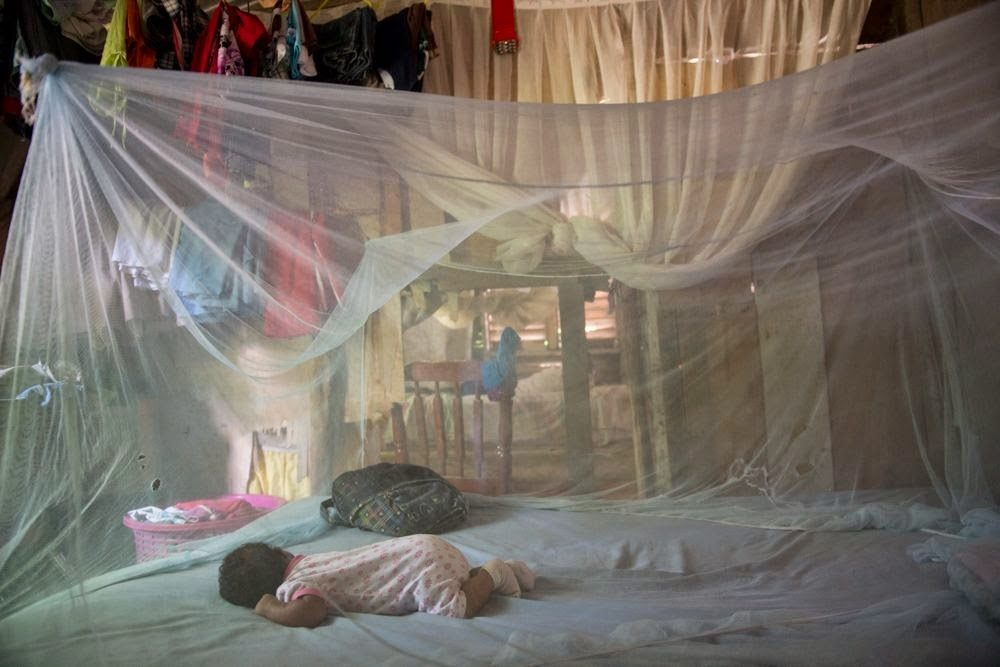 Se estanca la lucha contra la malaria