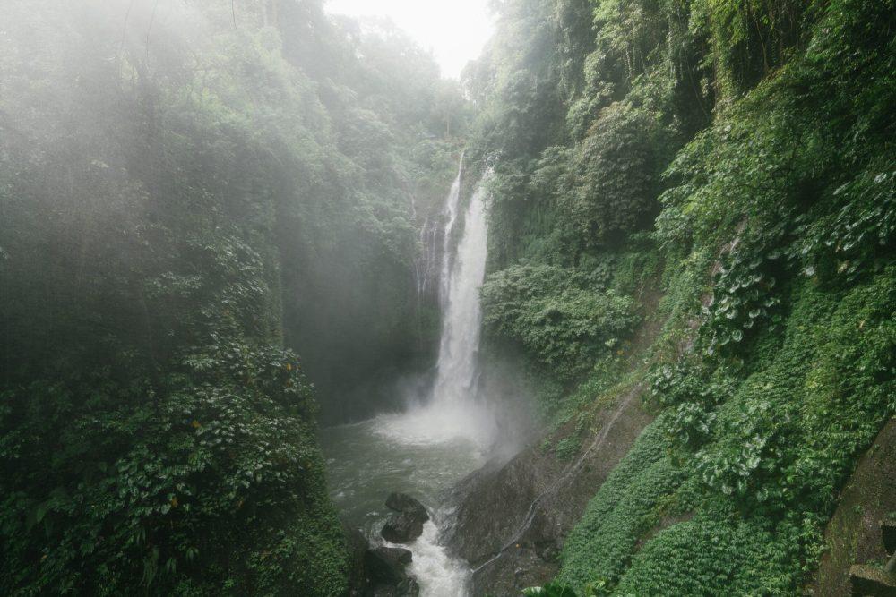 amazing-waterfall-with-lush-foliage-on-rocks-4534200